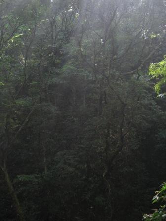 090501 比地大滝9.JPG