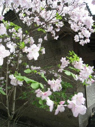 200804027 益子参考館2.JPG