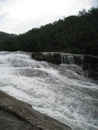 20081204 内浦川11.JPG