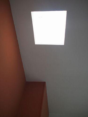 PB243473 (480x640) (375x500).jpg