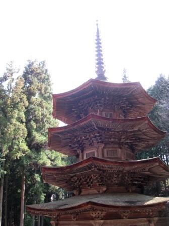 090330 安楽寺2.JPG