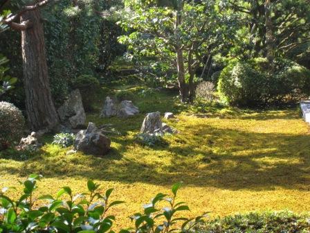 20080319 ふだん院4.JPG
