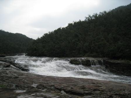 20081204 内浦川10.JPG